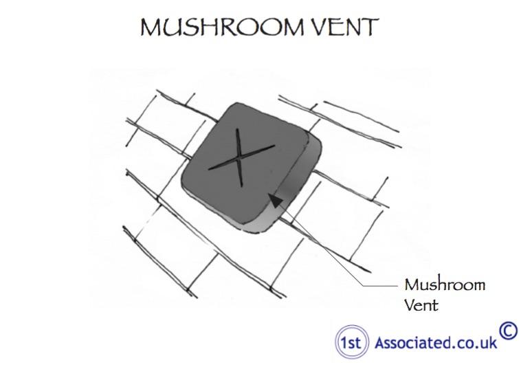 Mushroom Vent